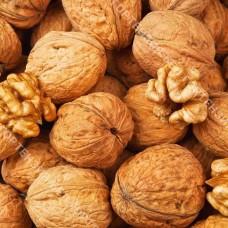 Грецкий орех Великан (привитый)